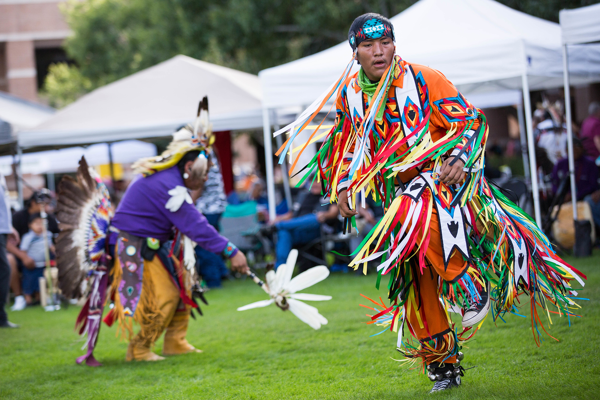 Native American Heritage Festival featuring the 19th Annual Veterans Day  Weekend Traditional Pow Wow