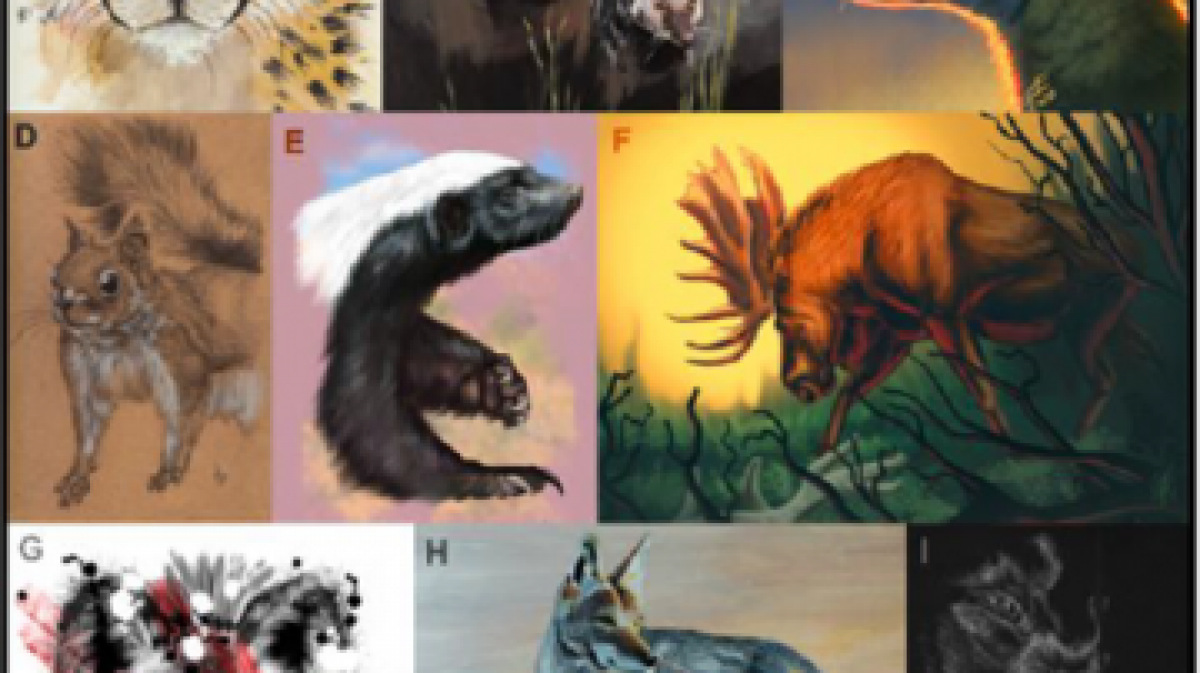 Photos of a selection of mammals that are a part of March Mamma; Madness.
