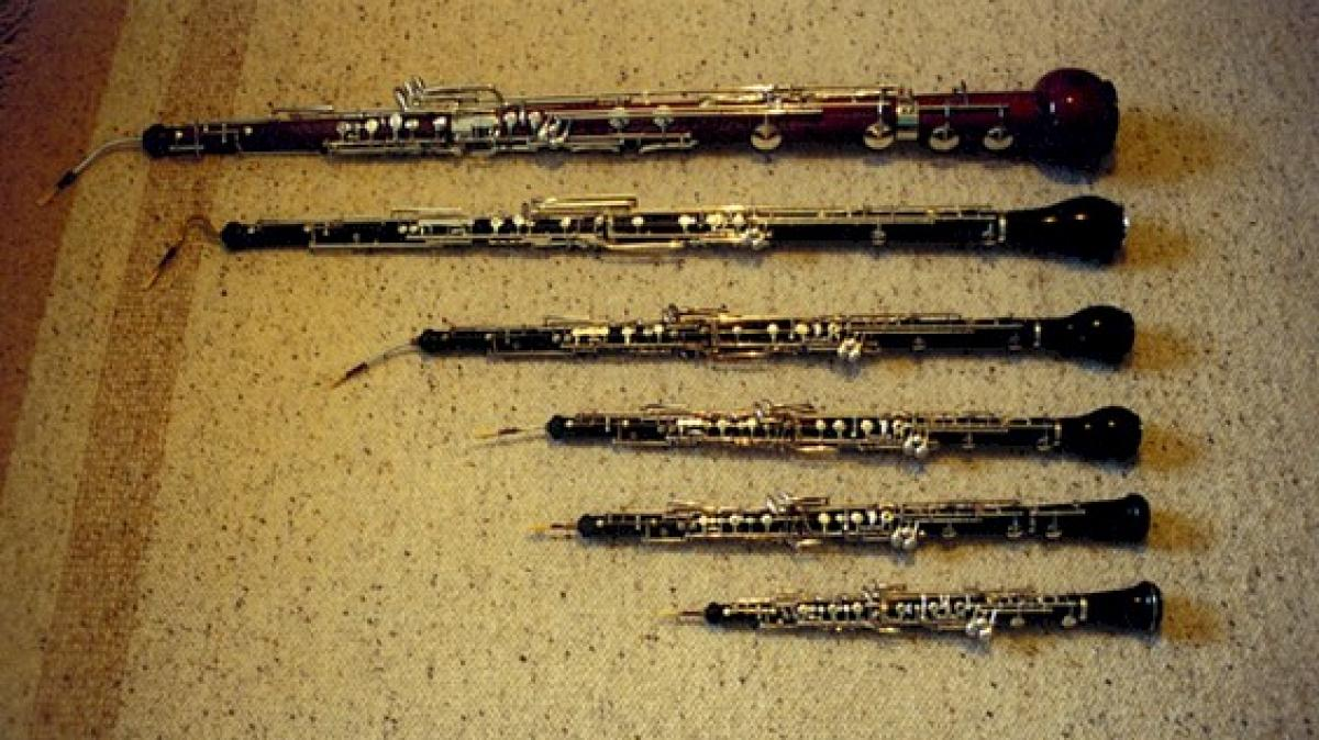 Photo of various sizes of oboe instruments