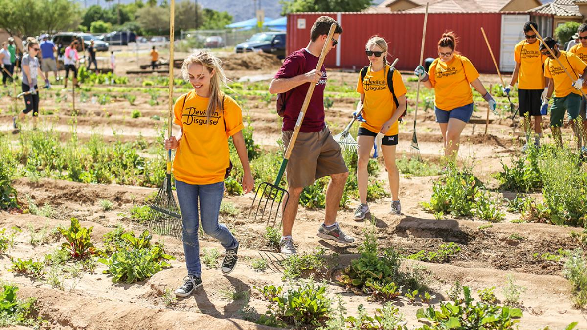 Picture of college students walking in a garden with rakes.