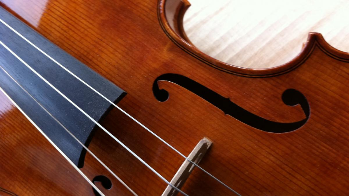 Close-up photo of a viola and bow