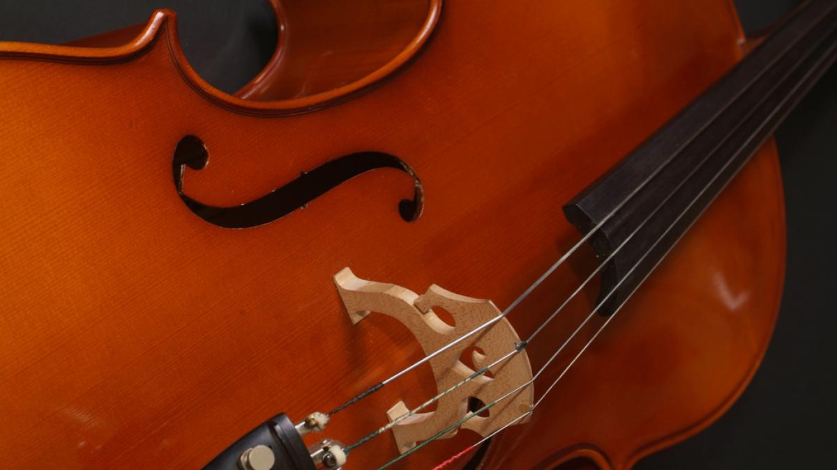 Stock photo of a violin